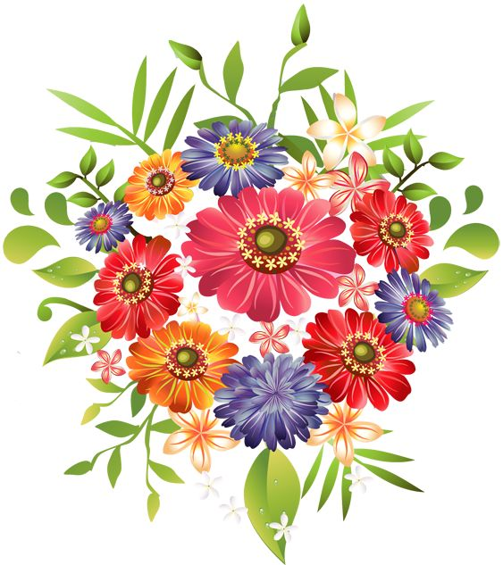 1000+ ideas about Spring Flowers Images on Pinterest.