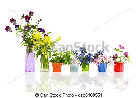 Stock Photography of Flowers in pots.