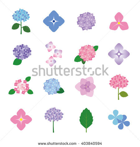 Set Early Flowers Summer Stock Photos, Royalty.
