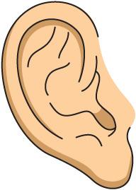 Free Clip Art Ear.