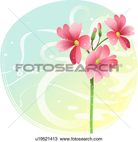 Primrose Clip Art EPS Images. 321 primrose clipart vector.