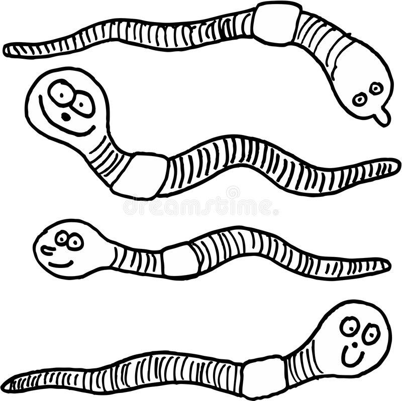 Earthworms Stock Illustrations.