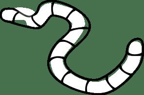 Earthworm clipart black and white » Clipart Portal.