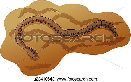 Earthworm Clipart Royalty Free. 814 earthworm clip art vector EPS.