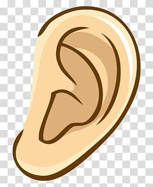 Middle ear Eardrum Ear canal Earwax, ear transparent.
