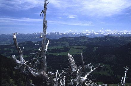 Allgäuer Alpen.