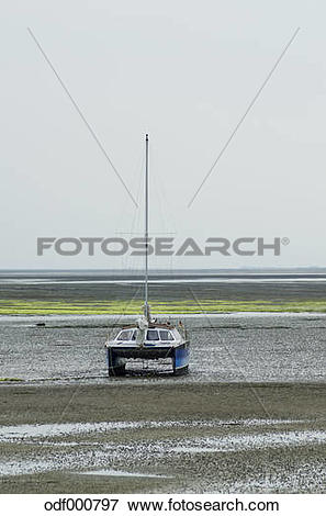 Picture of Germany, Lower Saxony, East Frisian Island, Juist.