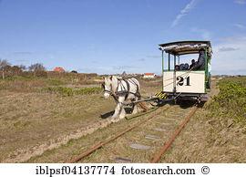 Frisian horses Stock Photo Images. 348 frisian horses royalty free.