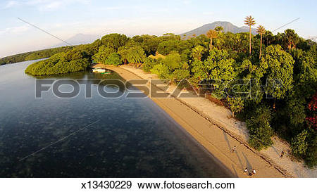 Stock Photograph of Baluran National Park East Java. x13430229.