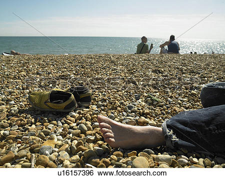 Stock Images of England, East Sussex, Brighton, Detail of a bare.