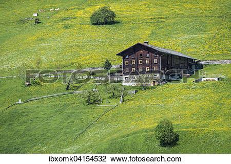 Stock Photo of Farmhouse and spring meadow, near Pragraten am.