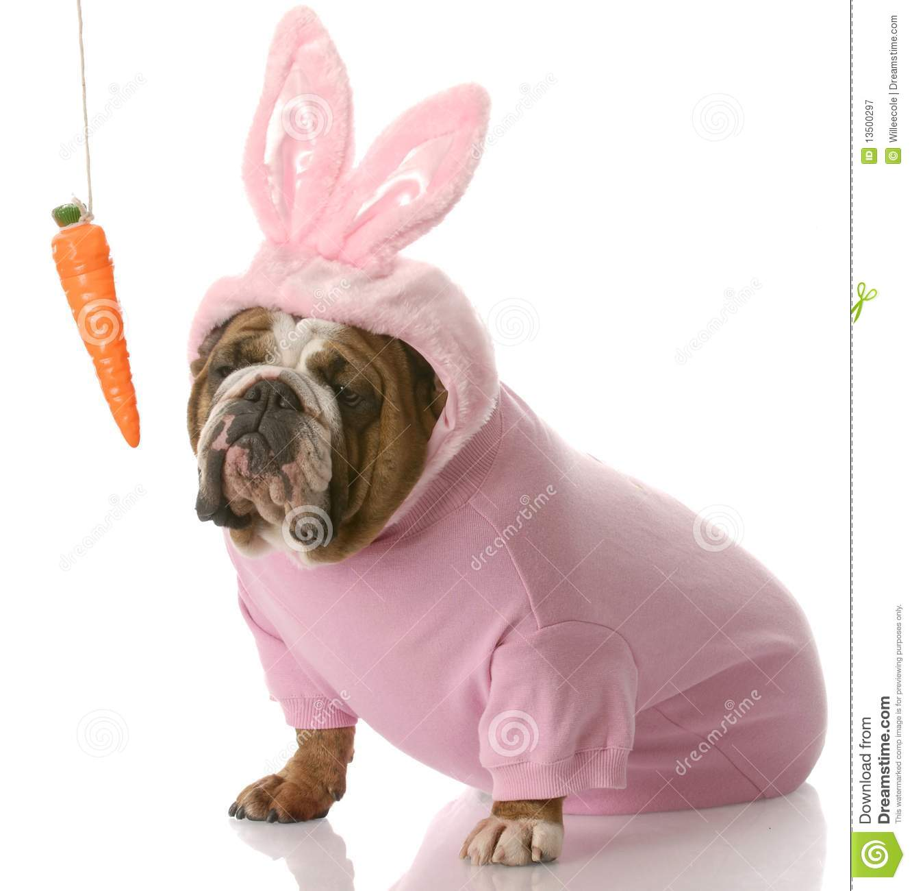 Easter Dog Clipart.