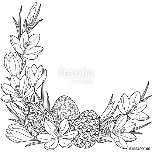 Spring flower vignette of crocuses and easter eggs. Black and white.