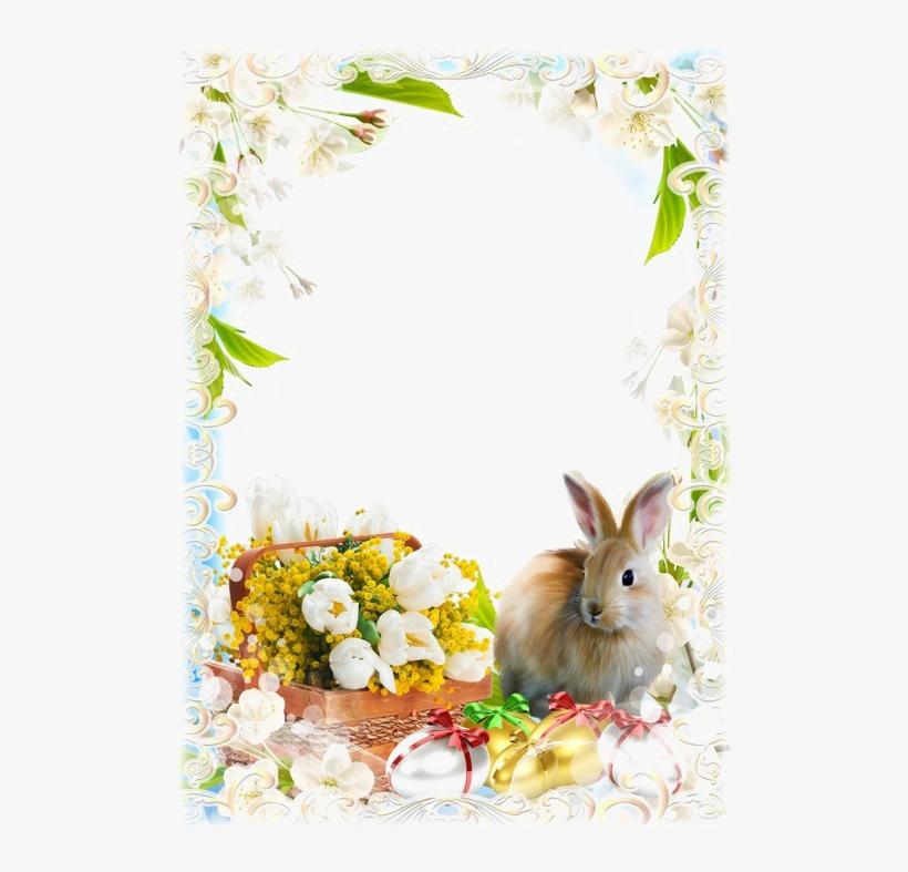 Easter Frames Transparent Image.