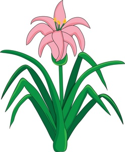 Easter Lily Clipart & Easter Lily Clip Art Images.