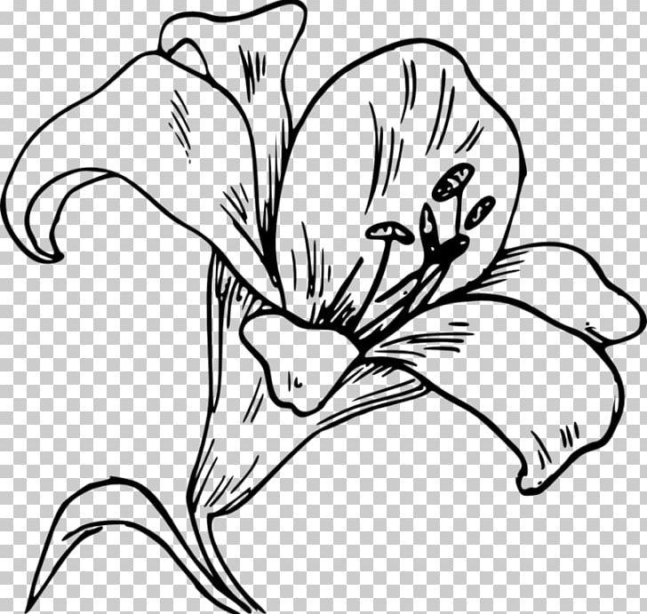 Easter Lily Lilium 'Stargazer' Computer Icons PNG, Clipart, Art.