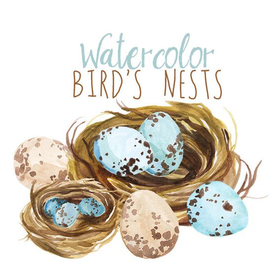 Watercolor Spring Clipart, Bird's Nest Easter Clip Art, Artistic.