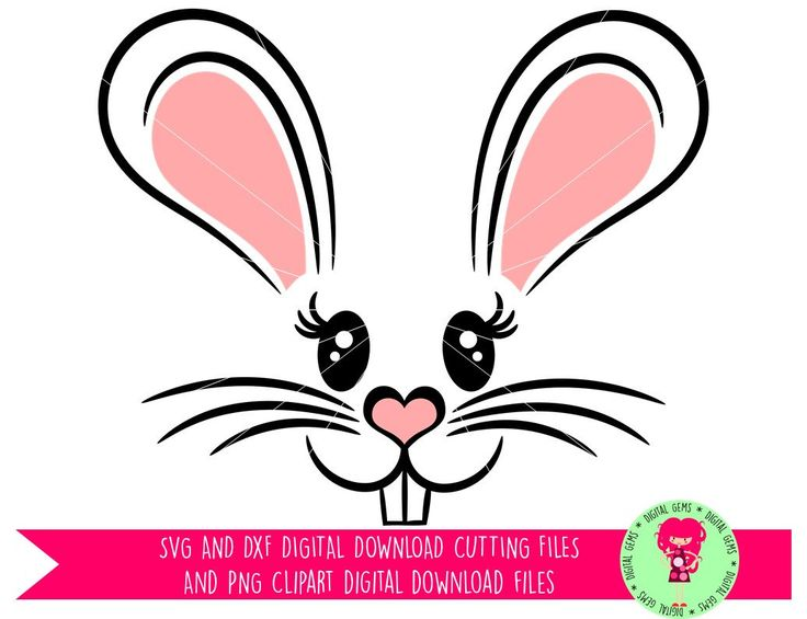 17 best ideas about Rabbit Clipart on Pinterest.