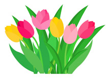 Clipart Tulips Spring Flowers.