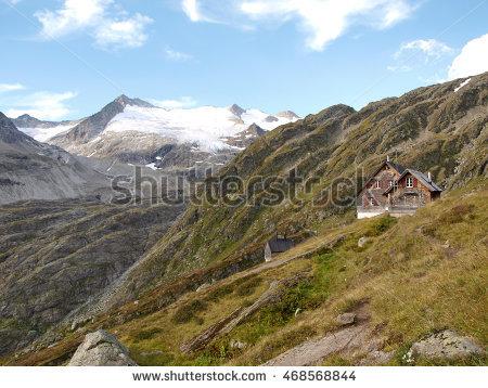 Alpine Vegetation Banco de imágenes. Fotos y vectores libres de.