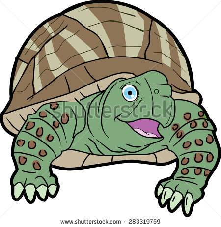 Box Turtle Drawing Stock Photos, Royalty.