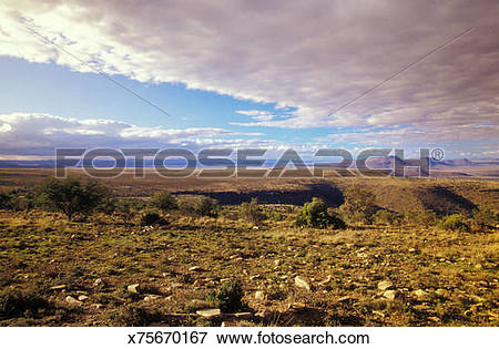 Picture of Moutain Zebra National Park, Eastern Cape, Great Karoo.