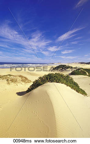 Stock Images of Sanddunes at Buchmans River Mouth, Port Alfred.
