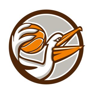 Eastern White Pelican T.