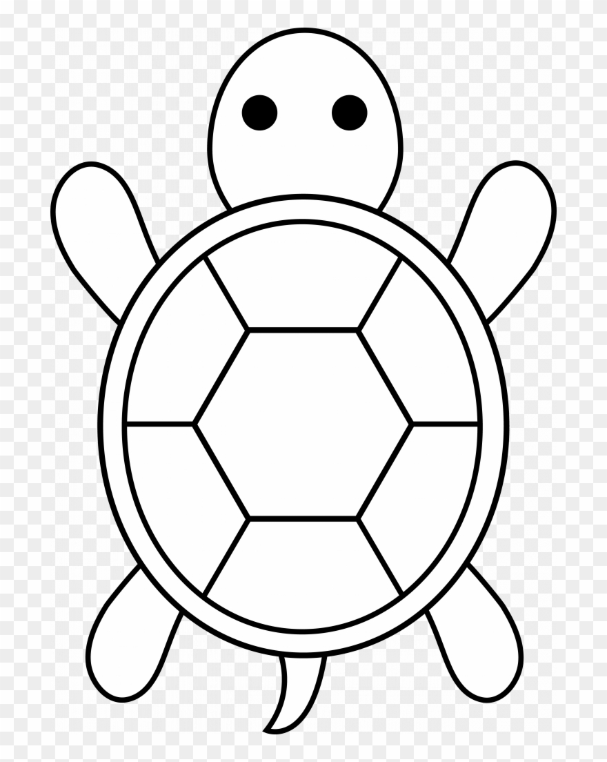 Weird Easy Coloring Pages For Boys Turtle Applique.
