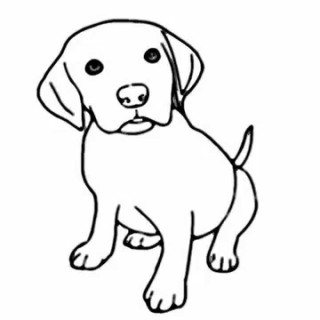Drawings Of Dog.