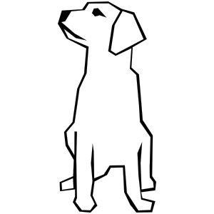 Drawing Dog.