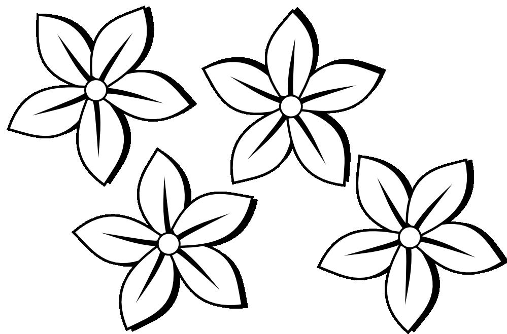 Hibiscus Flower Drawings.