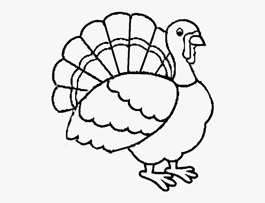 Best Turkey Printable Coloring Pages For Kids Boys.