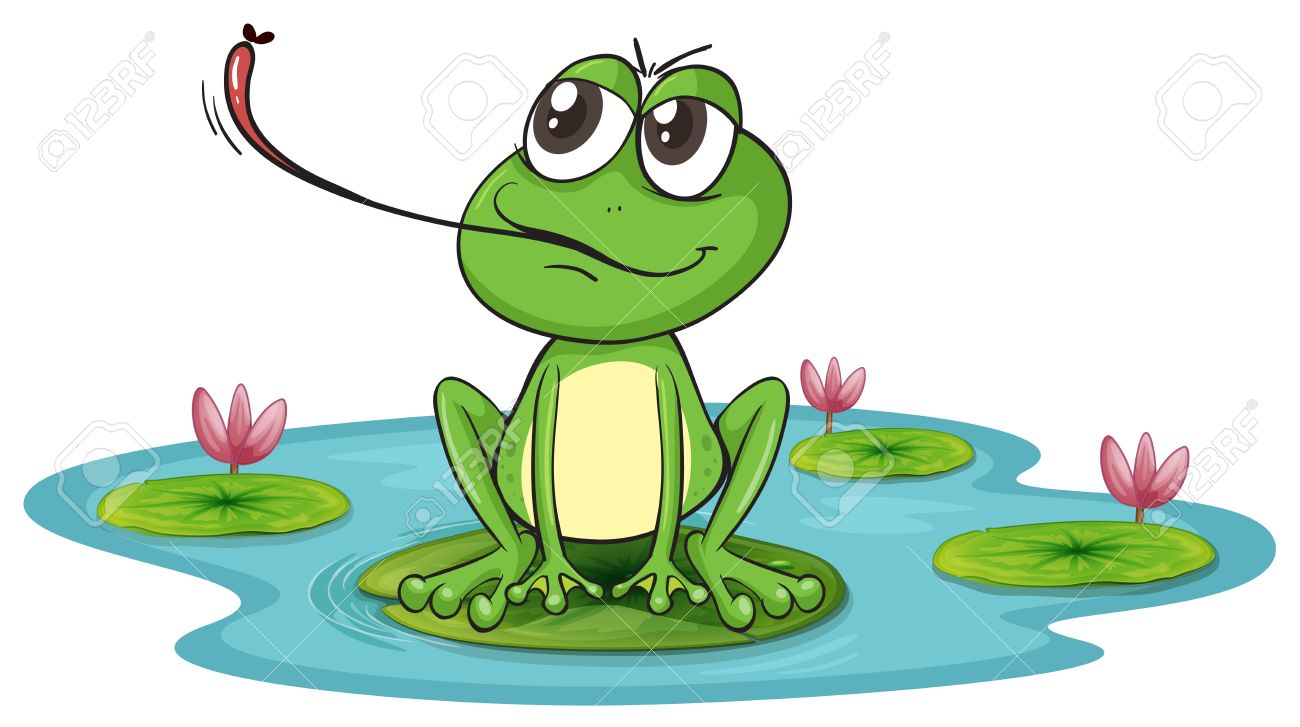 The frog pond clipart - Clipground
