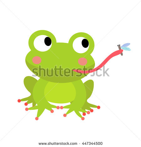 Frog Eating Fly Stock Photos, Royalty.