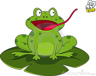 Frog with fly clipart.