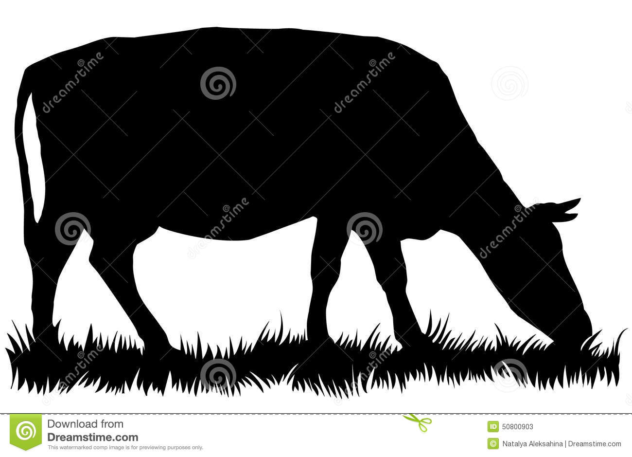 Cow Eating Grass Stock Illustrations.