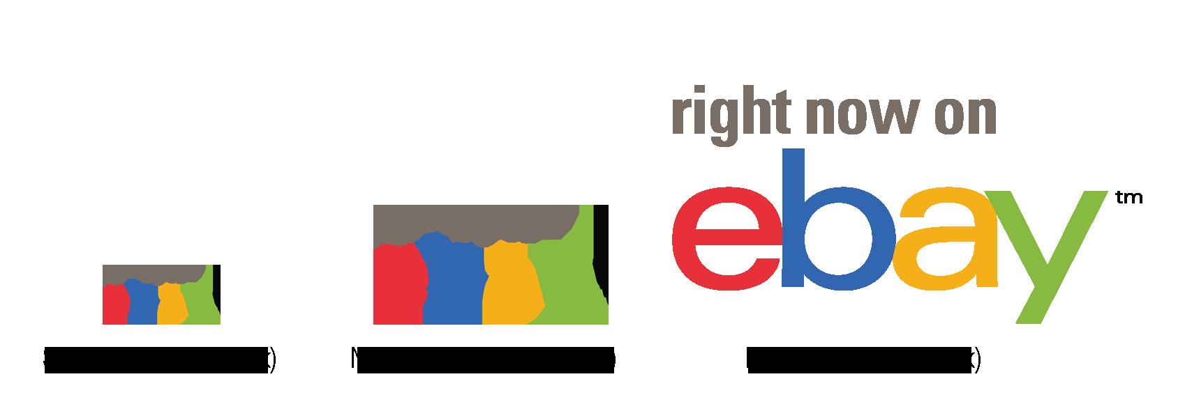 eBay logos and policies.
