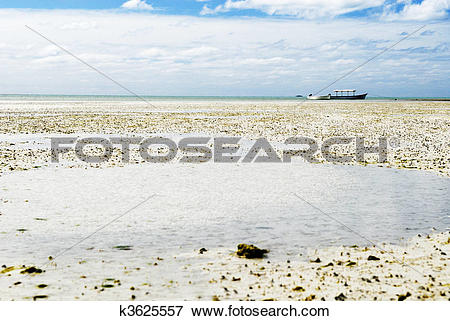 Picture of Ebb tide k3625557.