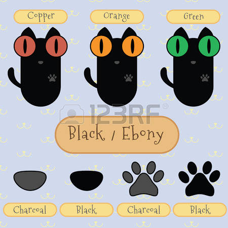 294 Ebony Colour Stock Vector Illustration And Royalty Free Ebony.