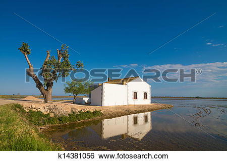 Stock Images of Delta del Ebro k14381056.