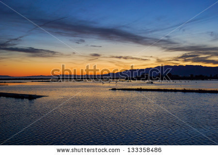 Ebro Delta Landscapes Stock Photo 133358486 : Shutterstock.