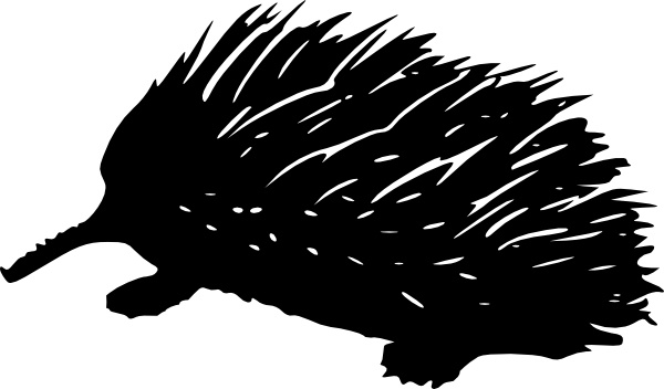 Echidna clip art Free vector in Open office drawing svg.