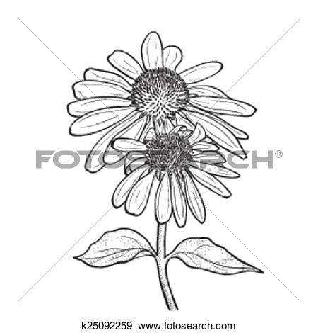 Clip Art of Hand drawn flowers.
