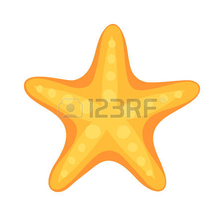 Echinoderms Stock Vector Illustration And Royalty Free Echinoderms.