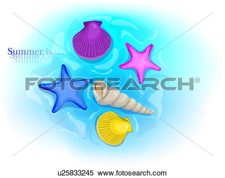 Stock Illustration of echinoderms, sea, echinoderm, animal.