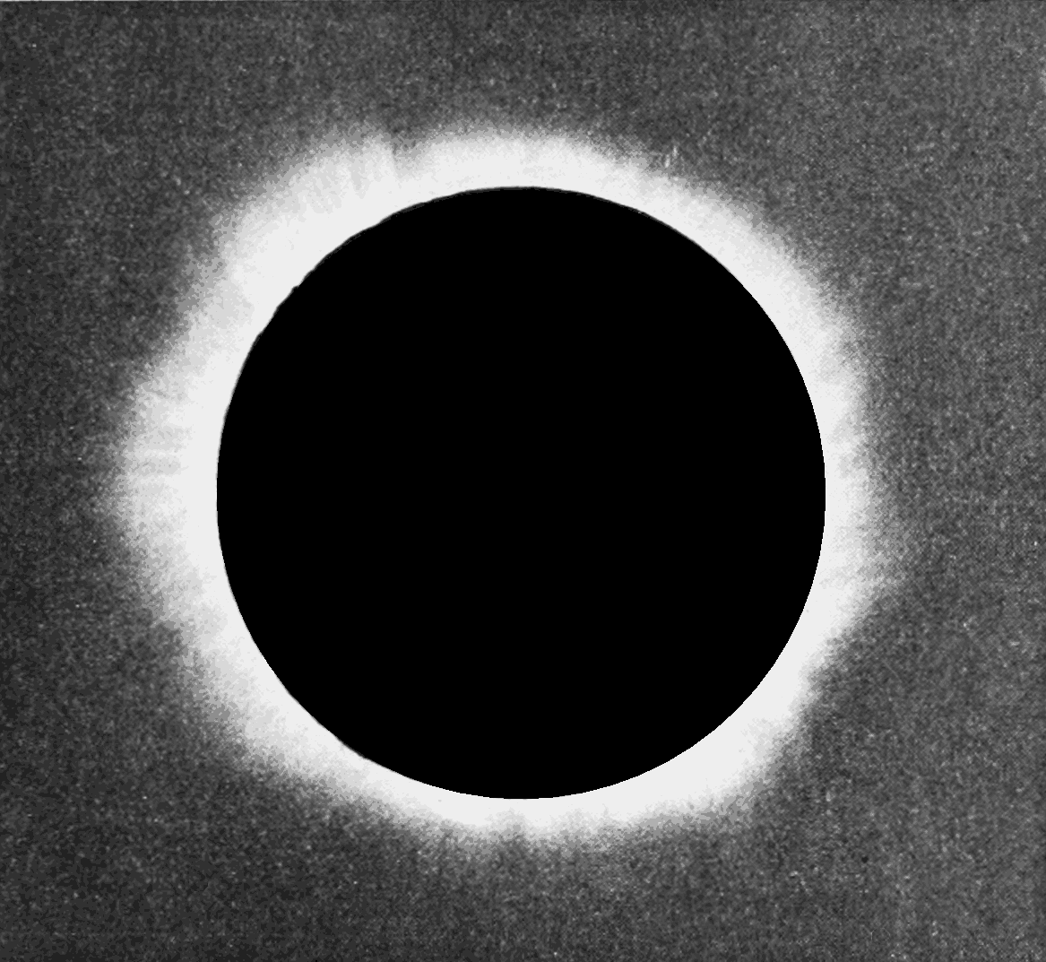 File:PSM V60 D257 Solar corona of 1893 eclipse.png.