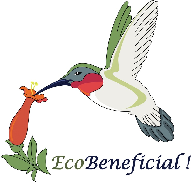 1000+ images about EcoBeneficial! The Company on Pinterest.
