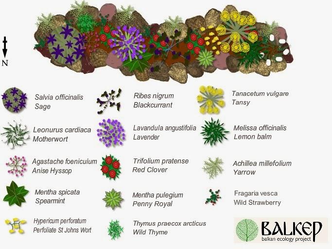 Balkan Ecology Project : January 2014.
