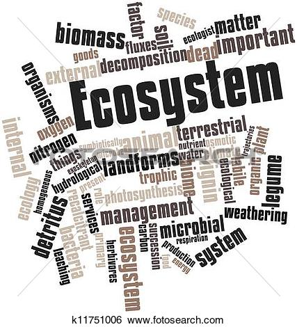 Stock Illustration of Ecosystem k11751006.